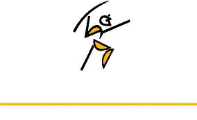 US logga WHITE. gul linjeCMYK (1)